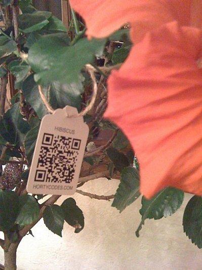 Taguez vos plantes avec des QRcodes | QRcodes | Scoop.it