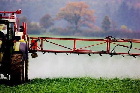 Pesticidas y productos industriales se cuelan en el hogar | Seguridad Alimentaria - YoComproSano | Scoop.it
