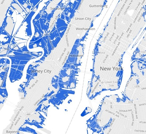 Flooding and Flood Zones | WNYC | informational landscapes | Scoop.it