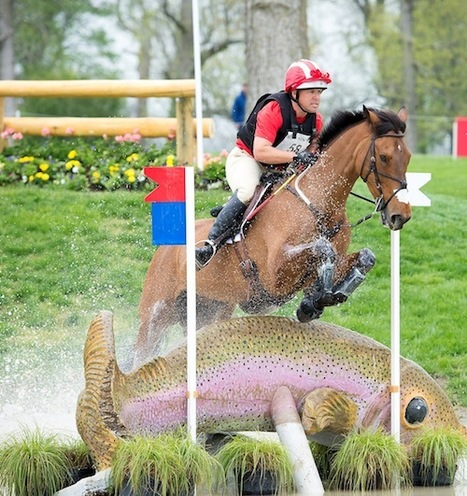 BallyNoe Castle RM Withdrawn from US Team for Aachen CIC03*; Marilyn Little and RF Smoke on the Water Named to Team | Fran Jurga: Equestrian Sport News | Scoop.it
