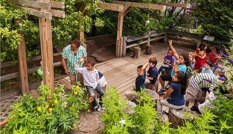 'Nature Is a Powerful Teacher': The Educational Value of Going Outside - Children & Nature Network (C&NN) | Heal the world | Scoop.it
