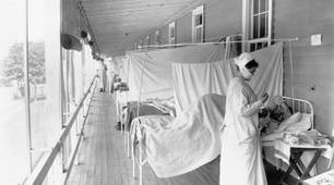 1918 influenza pandemic probably sprang from domestic and wild birds, not from human and swine virus mixture | Amazing Science | Scoop.it