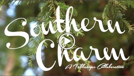Behind The Scene Video: Southern Charm Tablescape | Click! Magazine | Scoop.it