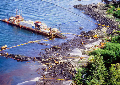 Oil Spill Cleanup - Activity - www.TeachEngineering.org | STEM | Scoop.it