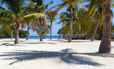 Belize Makes the 7 Top Green Travel Destinations | Belize in Social Media | Scoop.it