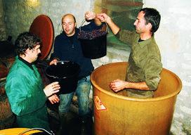 Anne Graindorge: vdv #52 : En 2013 soyez coopératifs ! | Vendredis du Vin | Scoop.it