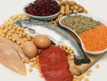 Pour ne plus avoir faim, misez sur les protéines !  | agro-media.fr | Actualité de l'Industrie Agroalimentaire | agro-media.fr | Scoop.it