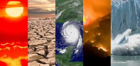 June marks 14 consecutive months of record heat for the globe | National Oceanic and Atmospheric Administration | Environmental issues | Scoop.it