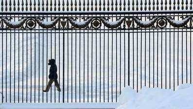 Al meer dan 200 koudedoden in Rusland | MaCuSa Vandevoorde Elliot | Scoop.it