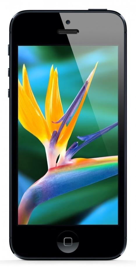 1.5 millions de pixels pour l'iPhone 5S ? - The Newton | Nouvelles technologies | Scoop.it