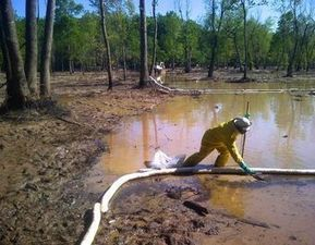 Full Extent of Heavy Metal Contamination in Exxon Oil Spill Still Unknown | InsideClimate News | Sustain Our Earth | Scoop.it