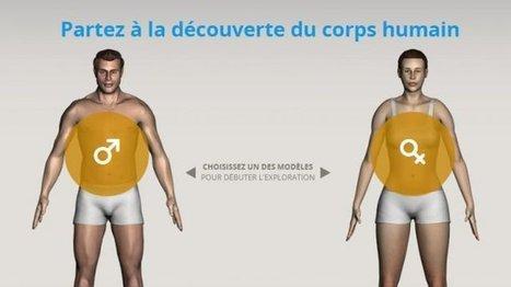 Angoulême : un nouveau jeu vidéo pour mieux connaître le corps ... - Francetv info   Mairie d'Angoulême   Scoop.it
