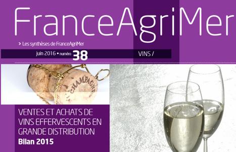 Ventes et achats de vins effervescents en grande distribution - bilan 2015 | Winemak-in | Scoop.it
