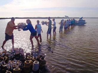 Oyster Restoration Team Named Disney Conservation Hero - SpaceCoastDaily.com | Fish Habitat | Scoop.it