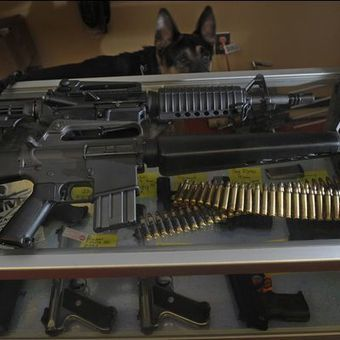 States look to tax guns, ammo - USA TODAY | gunz | Scoop.it