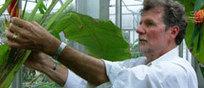 BIODIVERSITY: Do Plants Feel Pain? | > Animal Welfare | Scoop.it
