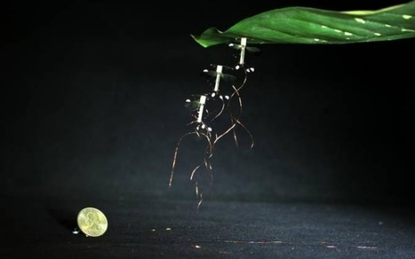 Robot volador capaz de pegarse y despegarse electrostáticamente a superficies — Noticias de la Ciencia y la Tecnología (Amazings®  / NCYT®) | Engineering news | Scoop.it