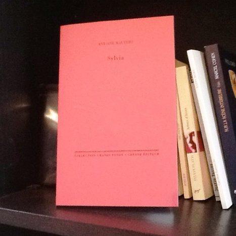 [vient de paraître]  Antoine Wauters, Sylvia, Cheyne éditeur, Collection Grands Fonds | Ma fugue | Scoop.it
