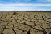 Des algues pour remplacer les combustibles fossiles - Sciences - Numerama | Algues et énergies | Scoop.it