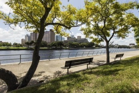 Study could help cities improve tree planting | Erba Volant - Applied Plant Science | Scoop.it