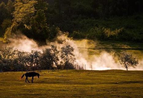 Nature Photography by Elena Simona Craciun | Photography Blog | Scoop.it