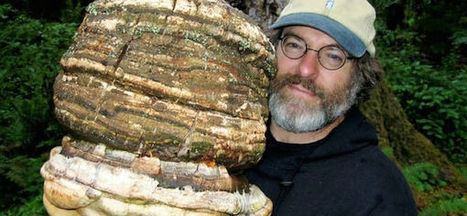 This Man Has A Patent Which Could Destroy Monsanto | Gardening | Scoop.it