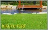 Lawn – An Easy Way to Make Your Home Beautiful | Beautiful and Quality Turf Supplies for Gardens in Sydney | Scoop.it