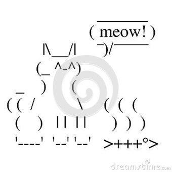 Happy Cat   ASCII Art   Scoop.it