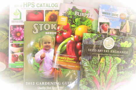 Seed Catalog Order Links | Free Seed Catalogs | Scoop.it