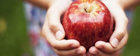 Kazakhstan's treasure trove of wildly-flavoured apples   Erba Volant - Applied Plant Science   Scoop.it