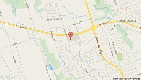 Vita Most Bowmanville, ON | Nutritional Supplements | Scoop.it