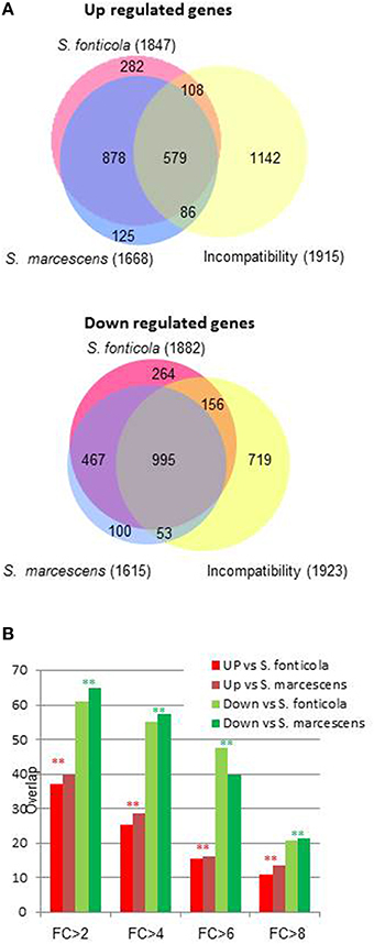 Overlapping Podospora anserina Transcriptional Responses to Bacterial and Fungal Non Self Indicate a Multilayered Innate Immune Response | MycorWeb Plant-Microbe Interactions | Scoop.it