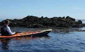 Pagayeur d'Iroise: Molène-Ouessant-Sein)   Le kayak de mer   Scoop.it
