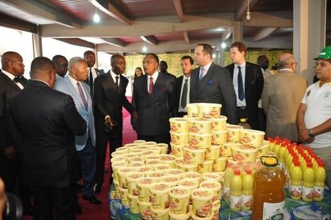 Agroalimentaire : Des investisseurs malaisiens injectent 350 milliards de FCFA dans un projet au Congo | Questions de développement ... | Scoop.it