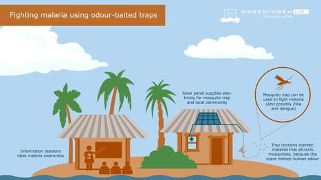 Soldreven myggefælde med menneskeduft slår malariamyg ihjel | Creative Innovation | Scoop.it