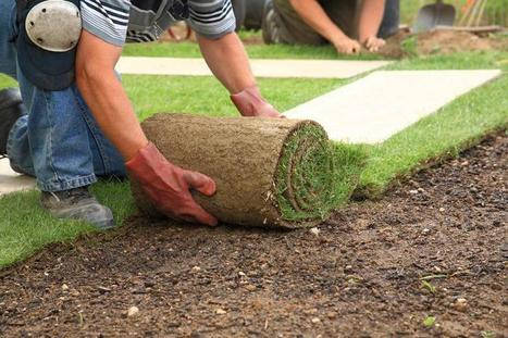 Boring Yard? Give It A Facelift With These Landscaping Tips | Landscaping | Scoop.it