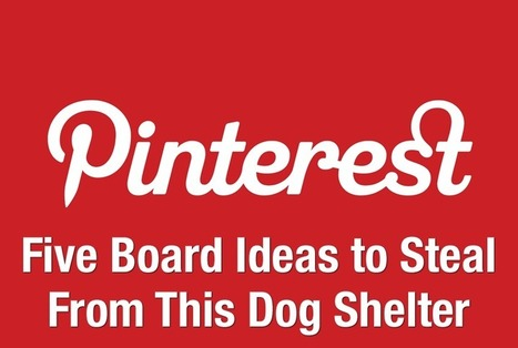 Five Creative Pinterest Board Ideas to Steal From This Dog Shelter | Everything Pinterest | Scoop.it