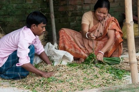 Challenging gender assumptions within farming and climate change research | CCAFS: CGIAR research program on Climate Change, Agriculture and Food Security | Gender and Climate Change | Scoop.it