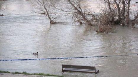 60.000 fallecidos y más de 90 millones de afectados por el cambio climático en 2015 | CTMA | Scoop.it