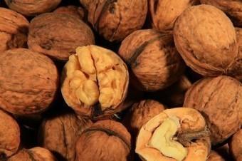 Pour vivre plus longtemps, adoptez une diète riche en noix ! | Planète Paléo | Scoop.it