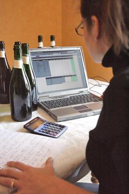 Vendanges 2013 : la douane facilite les déclarations en ligne | RDV Agri, Actu des Professionnels de l'Agriculture. | Scoop.it