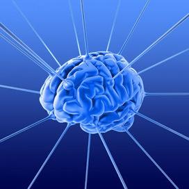 Debra Brenegan: Your brain on fiction . . . | Nonprofit marketing communications | Scoop.it
