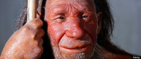 History and Archaeology news – Neanderthal Language & Speech ... | Archaeology | Scoop.it