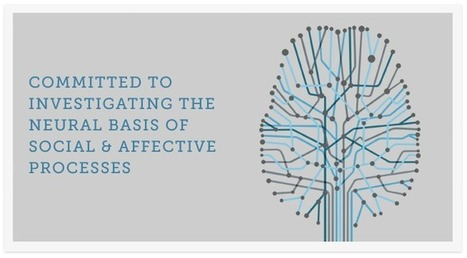The Social and Affective Neuroscience Society - Conference Information | Social Neuroscience Advances | Scoop.it