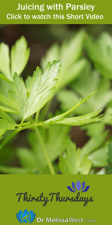 The benefits of Juicing with Parsley - Dr. Melissa West | Juicing For Health | Scoop.it
