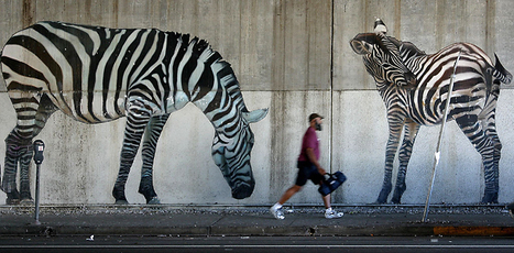 Biomimicry Design: The Answer May Be Zebra | Fast Company | The Integral Landscape Café | Scoop.it