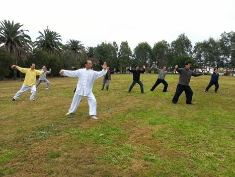 Qigong Classes for Children ~ Tai Chi Fitness Australia | Tai Chi Fitness Australia | Scoop.it
