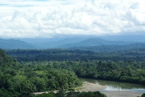 Ecuador Begins Drilling Oil in a Pristine Corner of the Amazon | Rainforest EXPLORER:  News & Notes | Scoop.it