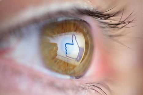 Hamburg aktiv gegen rechte Social Bots - WELT | Medienbildung | Scoop.it