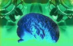 Men have bigger brains than women, research reveals - Times of India   Research Capacity-Building in Africa   Scoop.it